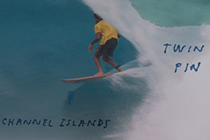 Mikey February Twin Pin Indo Sessions - V.1
